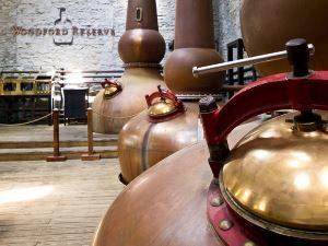Dampferzeuger in einer Whiskey Brennerei in Schottland